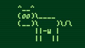 linux terminal bash scripting